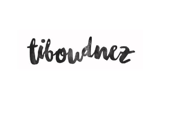 tiboudnez_FR_media_blog