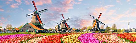 Netherlands_473x150