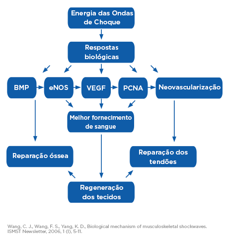 SWT_DR-graph-effects_PT_tc