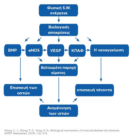 SWT_DR-graph-effects_GR_tc