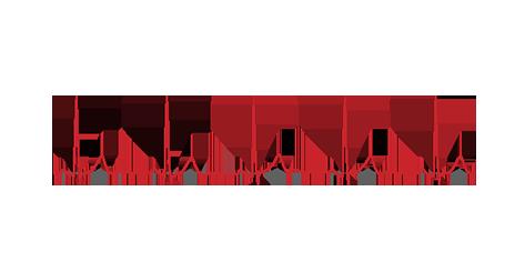 BTL_Cardiology_Excelent-signal-quality2
