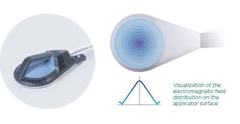 BTL_SIS_Electromagnetic_field_distribution