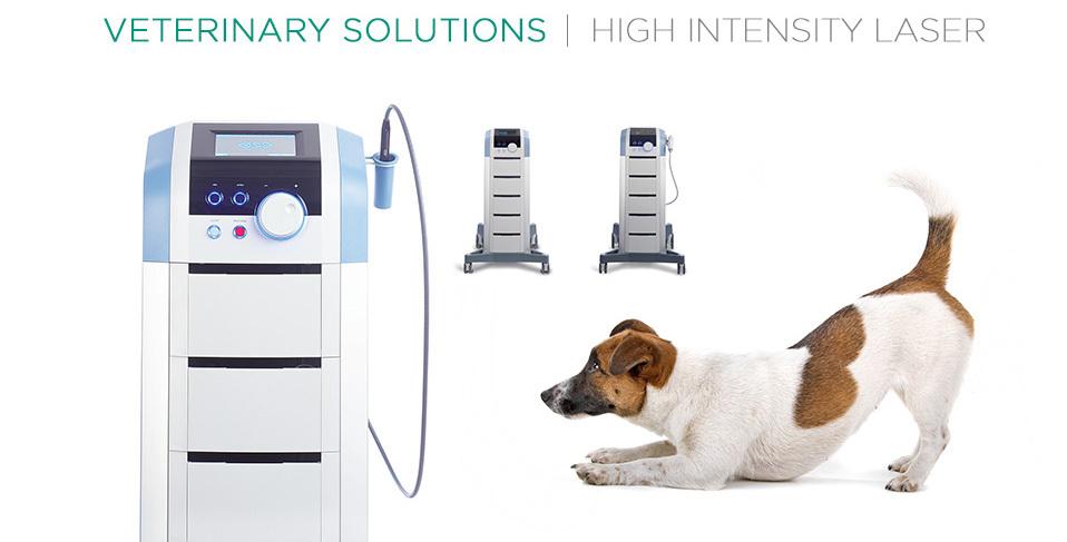 Veterinary_header